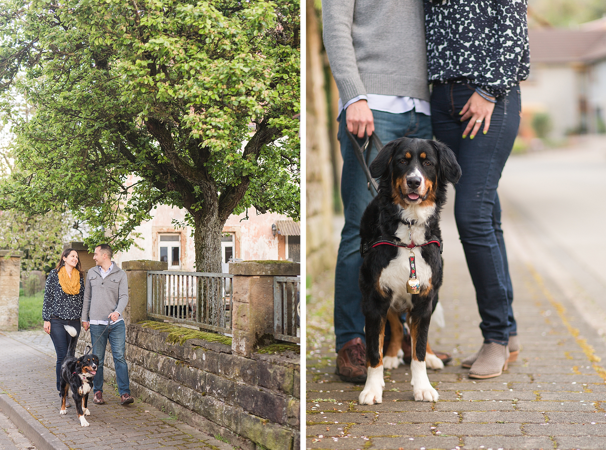 germany couples session with dog